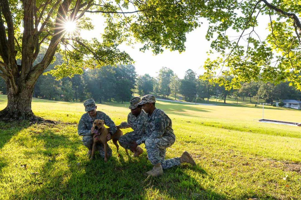 three cadets petting a dog